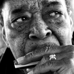 James Cotton: Cotton Mouth Man!