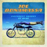 Joe Bonamassa. Differnet Shades of Blue