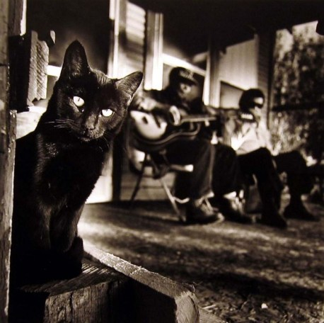 Blues Story: Bill Steber black cat