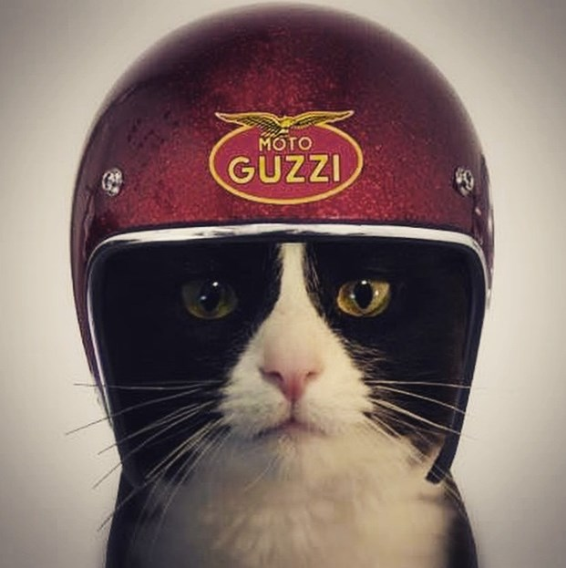 Casque Moto Guzzi