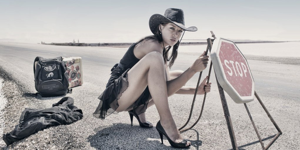 Dingo photographe