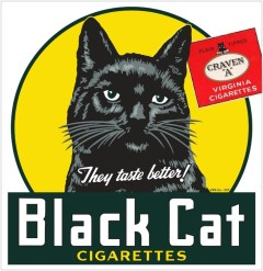Craven A Black Cat